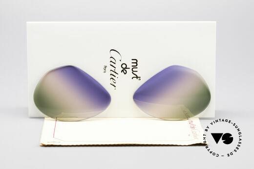 Cartier Vendome Lenses - L Tricolored Horizon Gläser Details