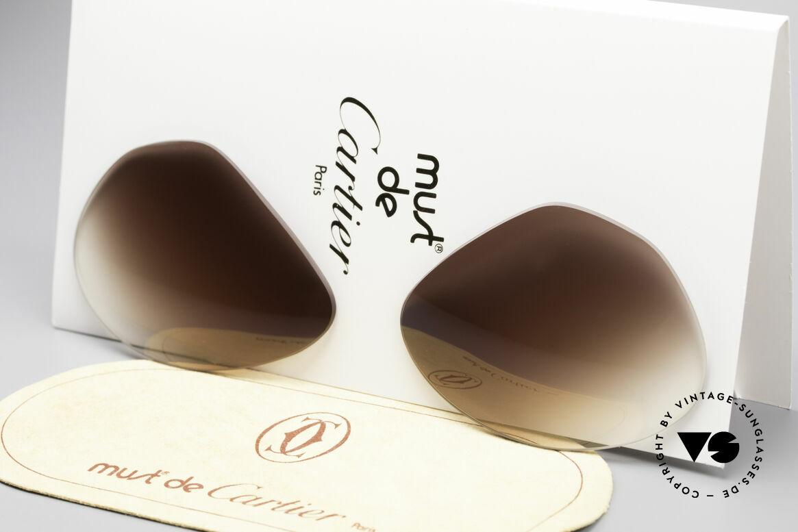 Cartier Vendome Lenses - L Sonnengläser Braun Verlauf, neue CR39 UV400 Kunststoff-Gläser (100% UV Schutz), Passend für Herren