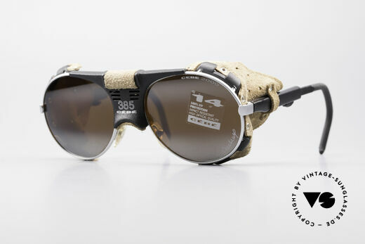 Cebe 385 Walter Cecchinel Ski Brille Details