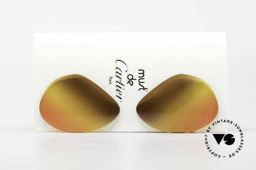 Cartier Vendome Lenses - L 3fach Verlauf Wüstensonne Details