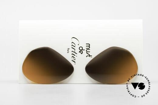 Cartier Vendome Lenses - L 2fach Verlauf Wüstensturm Details